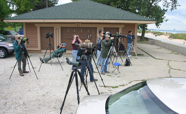 Birders and Bird Photographers